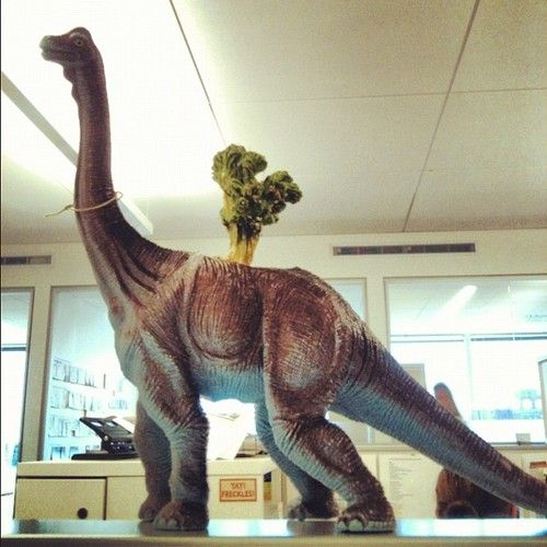 Fun Office Finds  How cool is this upcycled dinosaur toy-planter? Thanks for being able to part with this Allyson Dickman, Assistant Lifestyle Editor!  —@Elliot Thomson Stokes, Designer