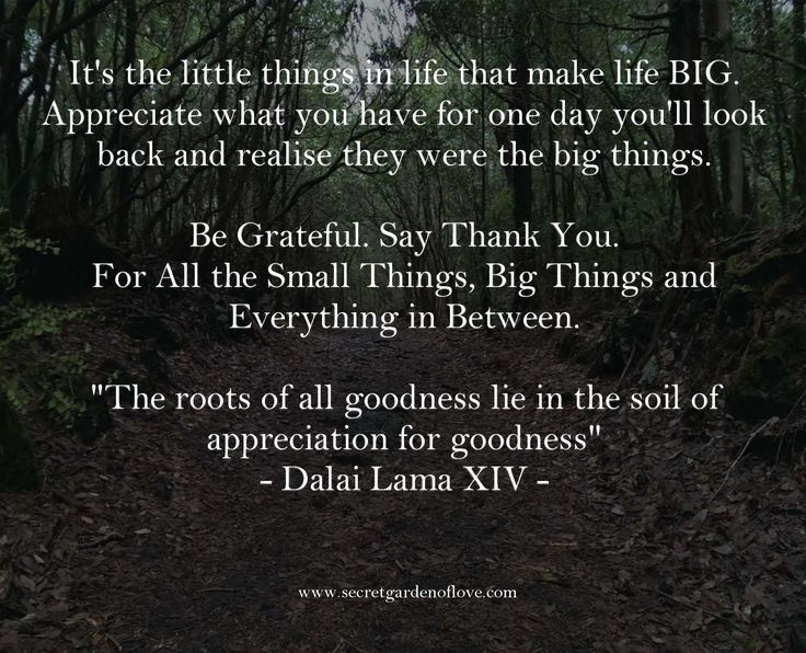 It's the little things in life that make life BIG. Appreciate what you have for one day you'll look back and realise they were the big things. Discover our secrets and quotes to a happy and healthy relationship www.secretgardenoflove.com