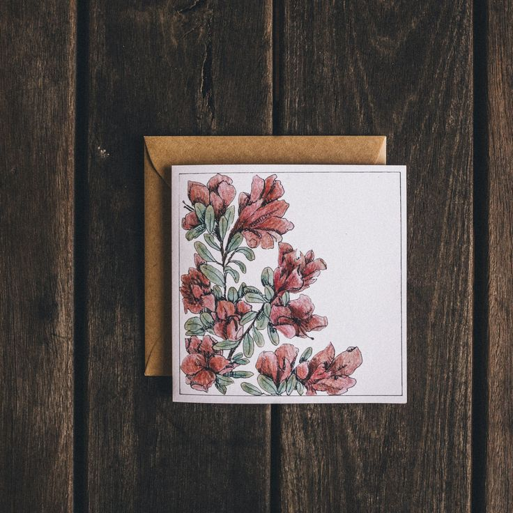 Azalea // greeting cards by Cedric & Melody
