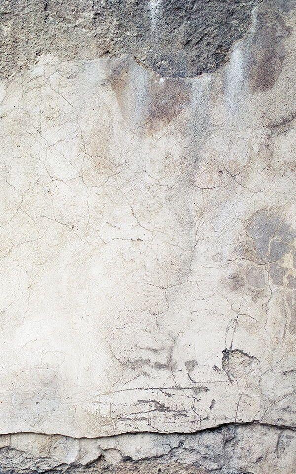 Broken Cracked Concrete Wallpaper Mural Murals Wallpaper In 2020 Concrete Wallpaper Cracked Wallpaper Botanical Wallpaper