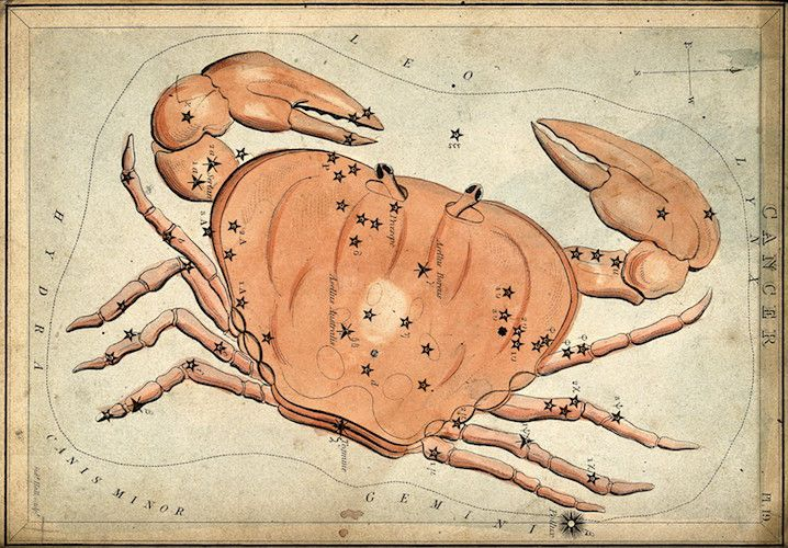 V0024939 Astrology: signs of the zodiac, Cancer. Coloured engraving b Credit: Wellcome Library, London. Wellcome Images images@wellcome.ac.uk http://wellcomeimages.org Astrology: signs of the zodiac, Cancer. Coloured engraving by S. Hall. after: Sidney HallPublished:  -  Copyrighted work available under Creative Commons Attribution only licence CC BY 4.0 http://creativecommons.org/licenses/by/4.0/