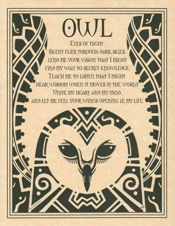 Owl wood burning project