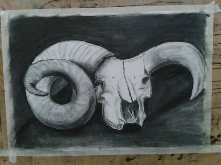 Drawing - charcoal on white paper, bone study