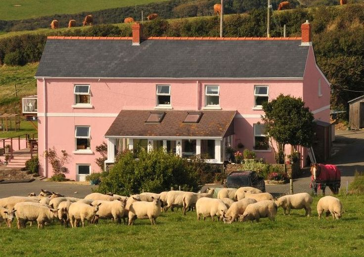 Bower Farm, Little Haven, Haverfordwest, Pembrokeshire. Wales. Camping. Caravanning. Family. Holiday. Rural.