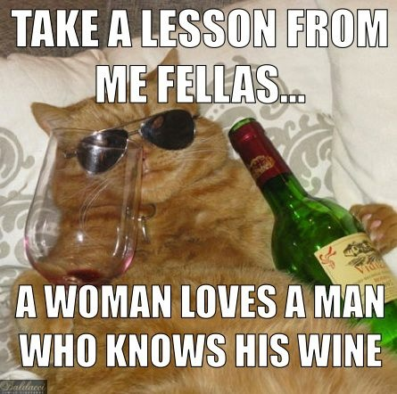 44 Best Images About Wine Memes And Humor On Pinterest