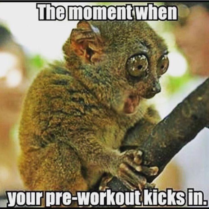 @thegymdudes . Oh fuck!  . Hashtags: #gym #gymrat #gymmemes #gymhumor #gymhype #funnygym #workouthumor #meme #lifting #liftinghumor #lift #funnylifting #girlswholift #gymgrind #riseandgrind #fitfam #progress #gymmotivation #gym #gymshark #gymselfie #gymfail #gymgirl #gymaholic #liftheavy #workout #workoutmotivation #workouts #funny