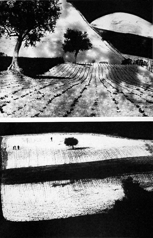 σ. | de-salva: Mario Giacomelli - Paesaggio 7 & 9...