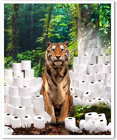 "Our actions have an impact throughout the web of life. ""The toilet paper on your grocery store shelves may have a direct impact on the 400 Sumatran tigers left in the wild. Not all tissue and paper towels are made from responsible sources."""