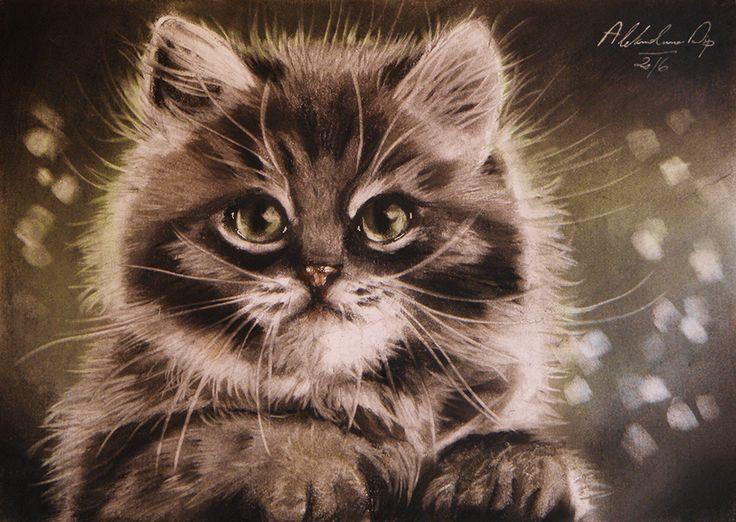 fb.com/aleksandrasipart  https://www.etsy.com/shop/AleksandraSip cat drawing, cat painting, aleksandra sip artistic works