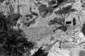 "François Le Diascorn.""A vanishing world in Karpathos Greece"". Greek Orthodox pope to his way to a mountain chapel. https://francoislediascorn-us.com/portfolios"