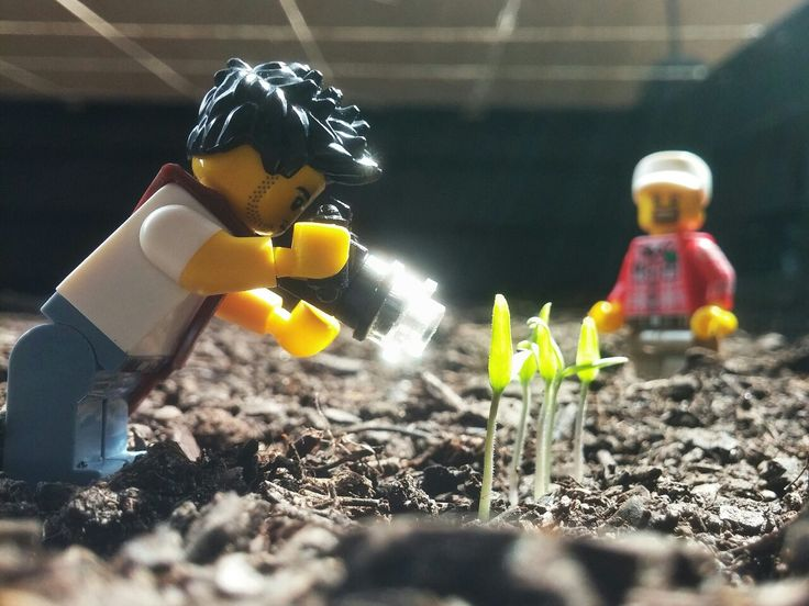 Getting some macros before the photo shoot with the farmer. #lego #minifig #legography
