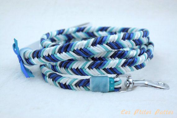 Laisse pour chien tressé bleu et blanc