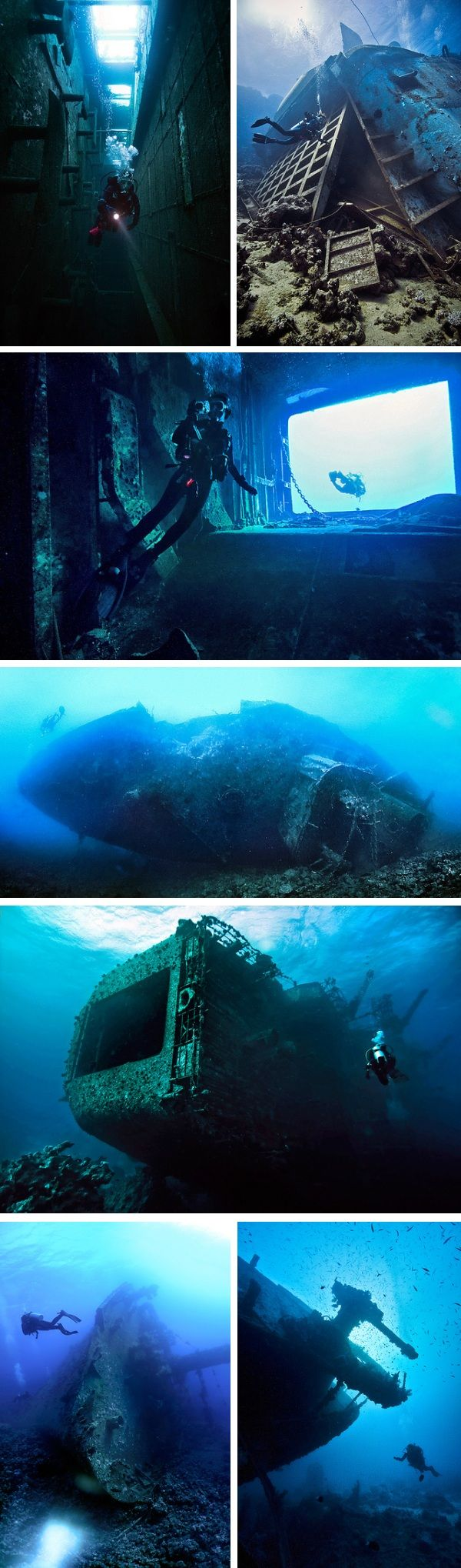 The Red Sea is a treacherous body of water known for its storms, fierce currents, chains of reefs and submerged islands.  As a result, the seabed is home to what is arguably one of the world's most impressive ship graveyards, with wrecks both merchant and military scattered across the bottom.