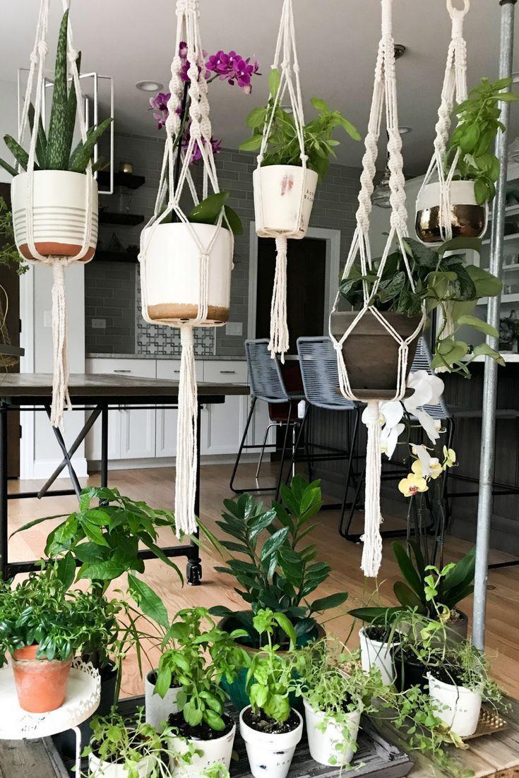 Diy Rolling Herb Garden Plant Hanger Plants Herb Garden Design