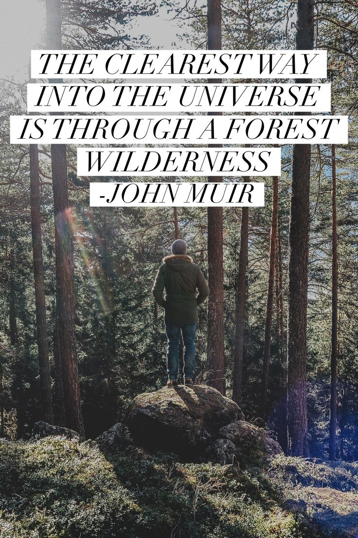 """""""The clearest way into the Universe is through a forest wilderness."""" - John Muir #quotes #quoteoftheday #johnmuir #universe #forest #wilderness #hiking #camping #inspiration #cloudline"""