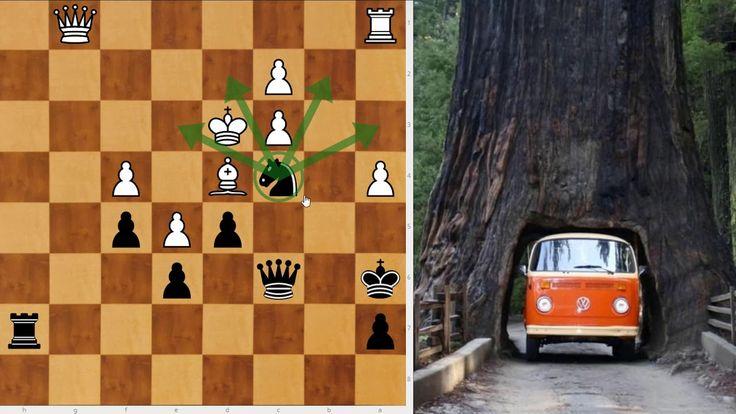 la finalounette du matin ! (l'arbre et la voiture, zieutez à droite !)
