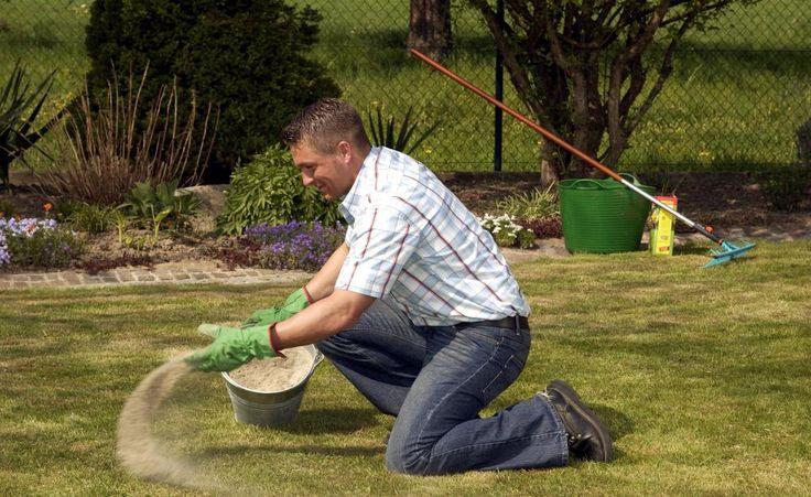 Bodenverbesserung Was macht einen guten Gartenboden aus?