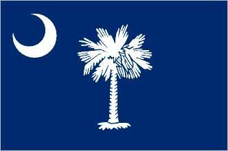 South carolina flag palm tree and crescent moon tattoo for Palmetto tree and moon tattoo