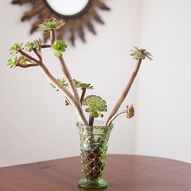 Vintage flowers jar. Companhia das Culturas | Algarve |