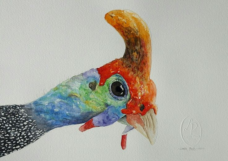 "Guinea fowl ""Curiosity"" Artist Lorna Pauls  Watercolors on 300g half sheet Bockingford paper Done March 2017"