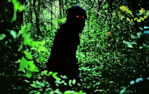 Mysterious Objects - Una notte con i film di Apichatpong Weerasethakul
