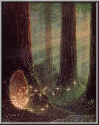 Magical Fairy Woodland-  a doorway into another world