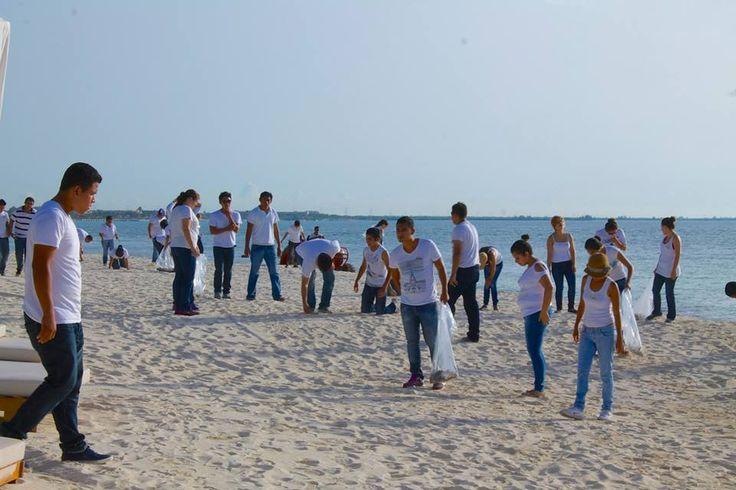 Трудимся на благо экологии и наших гостей! http://rivieramaya.grandvelas.com/russian/