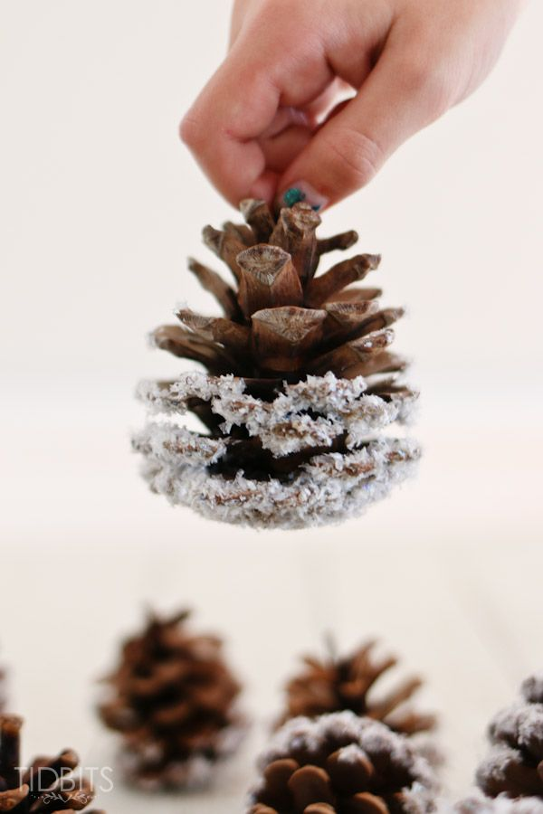 Diy Snowy Pine Cones A Little Craft In Your Day Diy Christmas Tree Ornaments Diy Pinecone Pine Cone Crafts