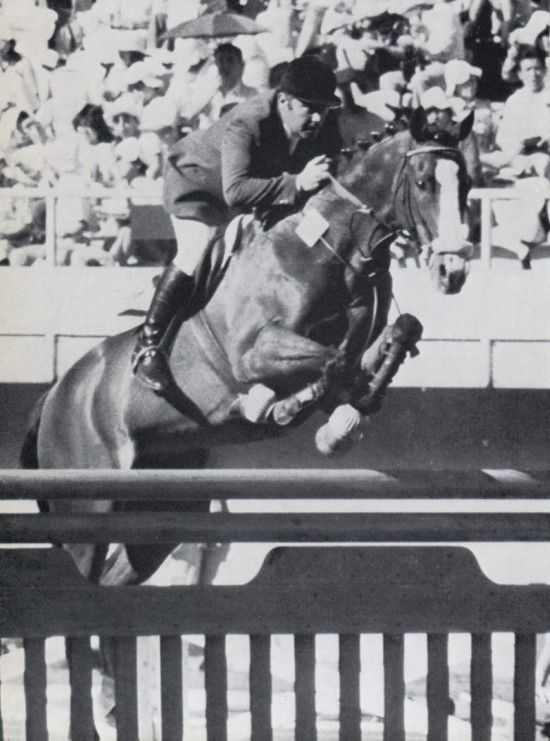 Rivage with Hubert-Parot   Olympic Team gold medal in jumping  summer 1976 in Montreal  Born at Haras de la Tuilerie in Normandie  France #OTTB