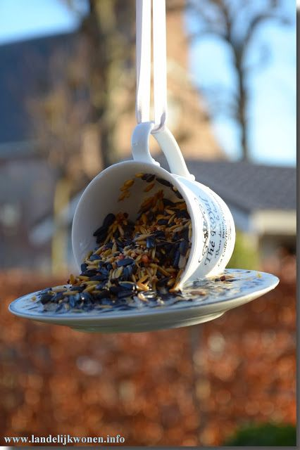 "Landelijk Wonen DIY ""High Tea"" for Birds"