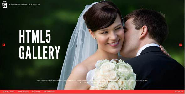 HTML5 Fullscreen Gallery - CodeCanyon Item for Sale