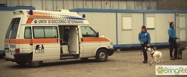L.I.D.A Soccorso Veterinario. L'ambulanza veterinaria per il trasporto di animali feriti