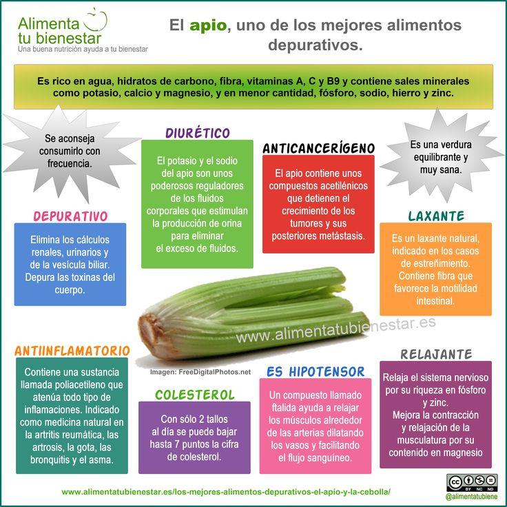 El apio es uno de los mejores alimentos depurativos. #infografia Propiedades del #apio