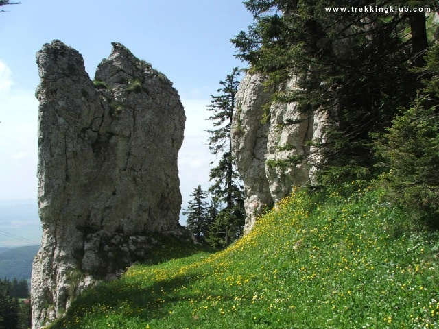 #Schulerau Gate (Poarta Doamnei) - #Postavarul_mountains, #Transylvania