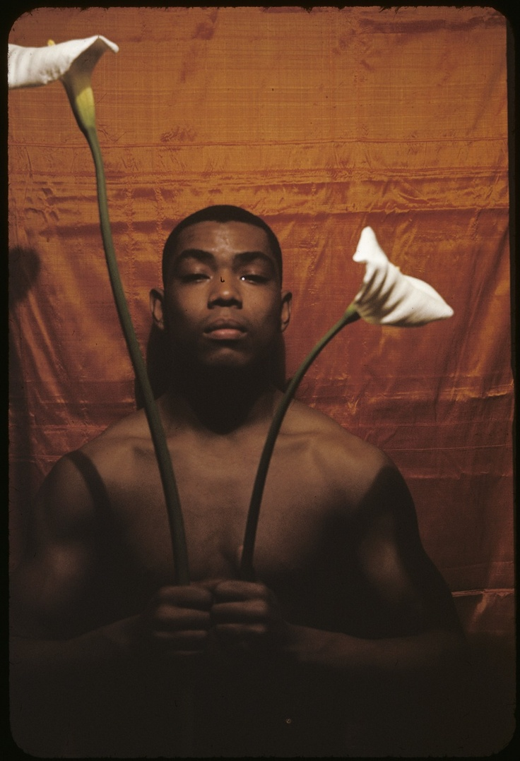 65 best carl van vechten images on pinterest black history music and african americans - Alvin ailey seine musicale ...