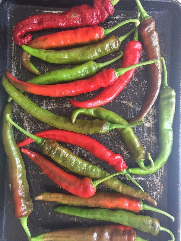 Italian Long Hots Mesilla Hybrid Peppers Recipe Stuffed Peppers Hot Pepper Recipes Long Hot Peppers