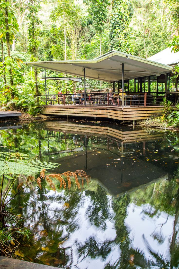 Where to stay in Australia's famous Daintree National Park - the Daintree Eco Lodge & Spa