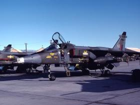 XZ385 Jaguar GR1 No14 Sqdn RAF Nellis:  This Photo was uploaded by jinxx1. Photo by Clifford Bossie