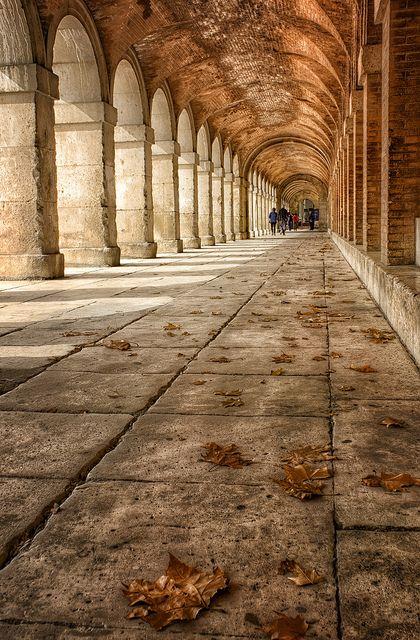 Otoño en el Real Sitio de Aranjuez   Madrid  Spain