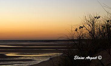 The delicate outline of the sea grasses makes a beautiful addition to the Pilbara sunrise. #EvenEasierDigitalPhotography #PortHedland #WesternAustralia
