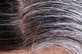 O artigo Descubra como acabar com os cabelos brancos sem gastar muito faz parte do conteúdo do Remédio-Caseiro.Escurecer os fios em casa tem várias vantagens, como economia, conforto e saúde. Conheça algumas dicas para acabar com os fios brancos sem gastar muitoO artigo Descubra como acabar com os cabelos brancos sem gastar muito faz parte do conteúdo do Remédio-Caseiro.