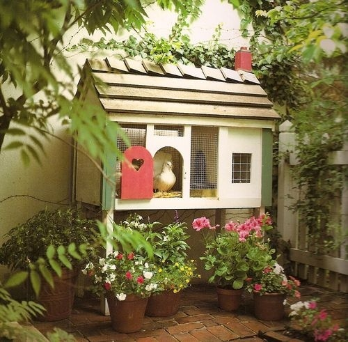 chicken coop--cute, cute, cute.. just don't let the chickens out because those flowers will be gone!