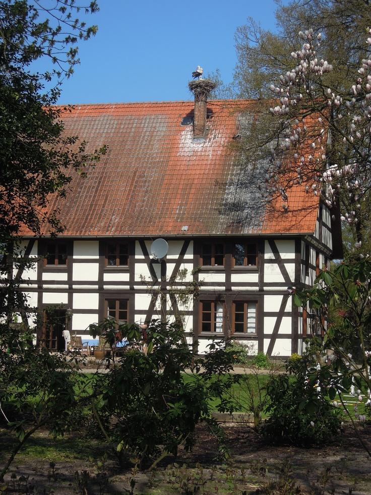 Fachwerkhaus mit Storchennest im Tierpark Ströhen (Niedersachsen)