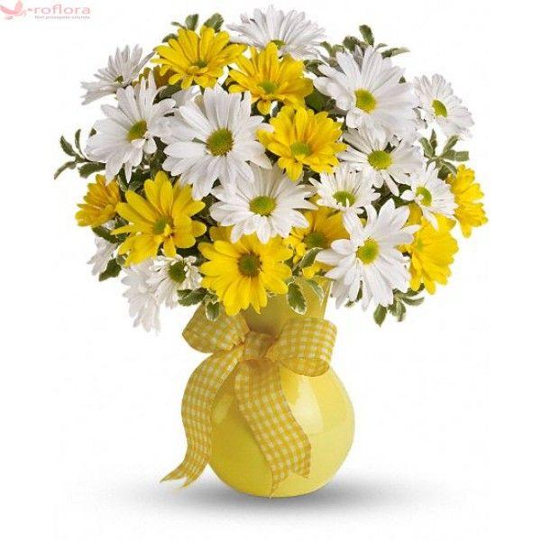 daisy_buchet_din_crizanteme.jpeg (600×600)