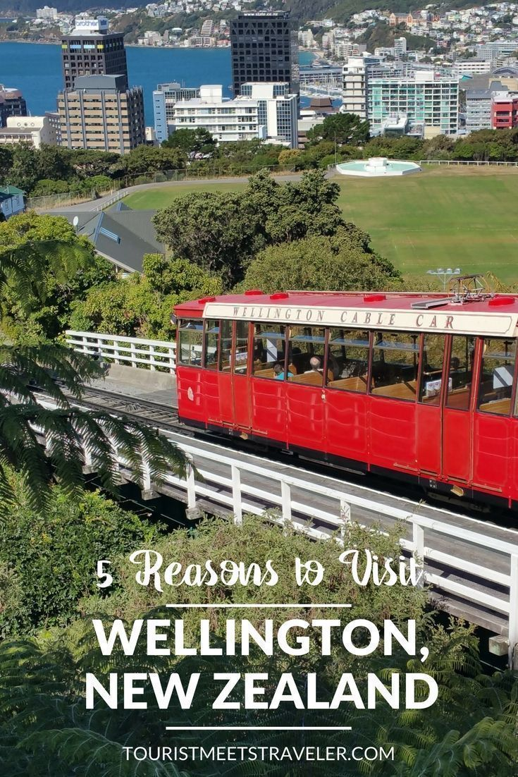 5 Reasons To Visit Wellington New Zealand Tourist Meets Traveler Wellington New Zealand New Zealand Hotels New Zealand Travel Guide