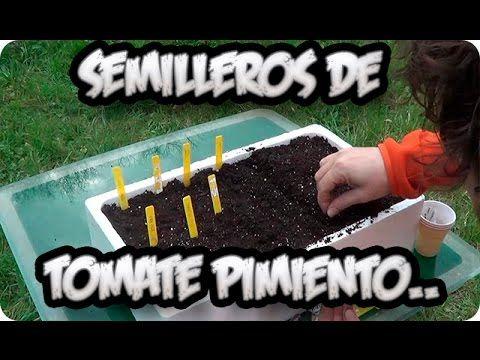 Cómo+sembrar+tomates,+pimientos+y+berenjenas+en+tu+huerto