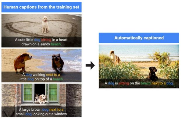 Mange nyder de simple fordele med Googles AI fotogenkendelse. Ny avanceret teknologi sætter nye højder for billedgenkendelse.