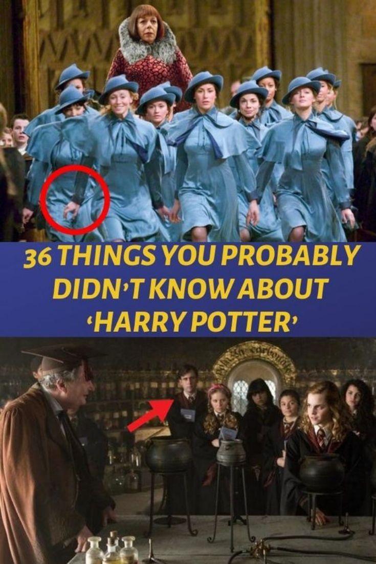Quiz Only A True Harry Potter Fan Knows The Meaning Of These 16 Words Harry Potter Words Harry Potter Buzzfeed Harry Potter Fan