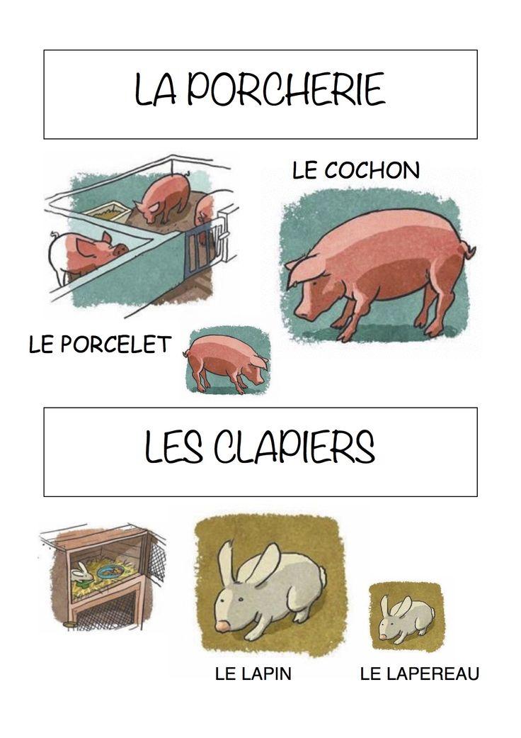 Vocabulaire de la ferme Imagier simple pour la maternelle : la porcherie et les clapiers
