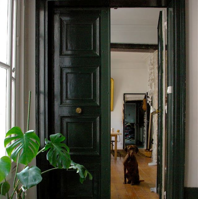 Forests, The Doors, Green Doors, Dogs, Black Doors, Paris Apartments, Colors, Interiors, Cocktails